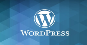 WordPress Theme Plugin Vulnerability